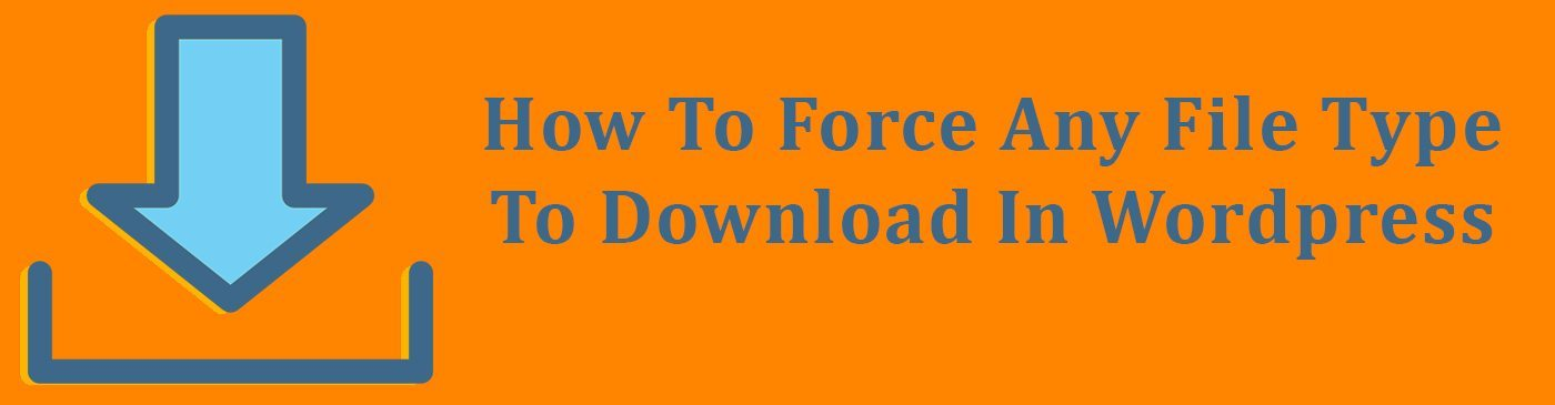 How To Force Any File Type To Download In Wordpress - True Design